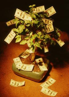 Money Growing