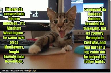History Cat