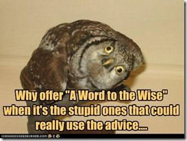 funny-pictures-why-offer-a-word-to-the-wise-when-its-the-stupid-ones-that-could-really-use-the-advice