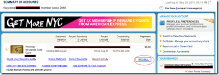 American Express Summary of Account